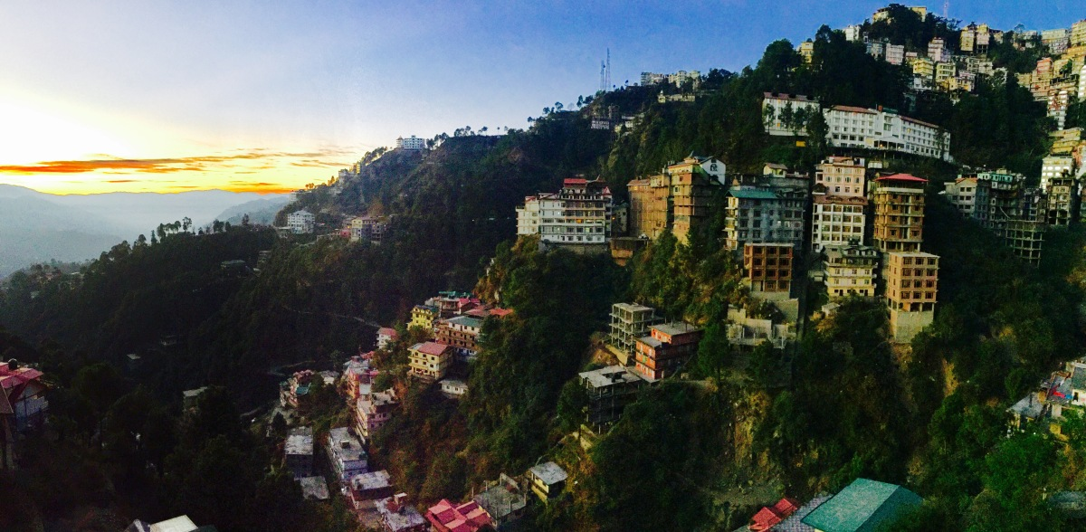 Shimla, under the Deodars